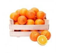 Апельсины Египет 1 категория