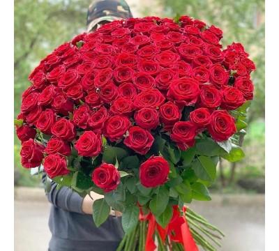 Свежая 101 роза Гран При  в Одессе