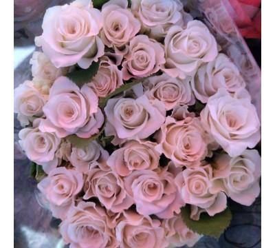 Свежая роза от производителя