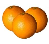 Апельсины Валенсия Испания