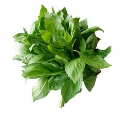 Базилик зеленый пучек