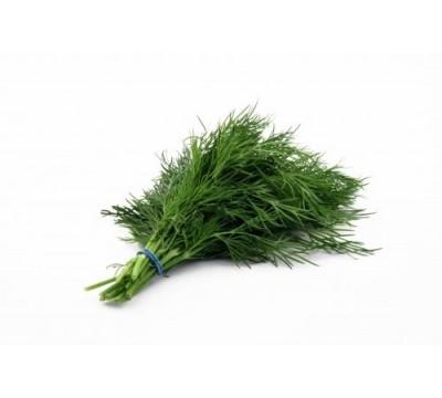 Зелень укроп с доставкой